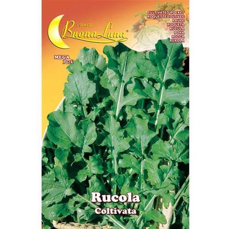 Semi Orto Rucola Coltivata Articolo Da Giardino Conf. 10 Pz
