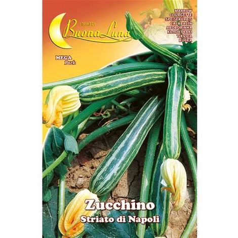 Semi Orto Zucchino Striato Napoli Articolo Da Giardinaggio Conf. 10 Pz