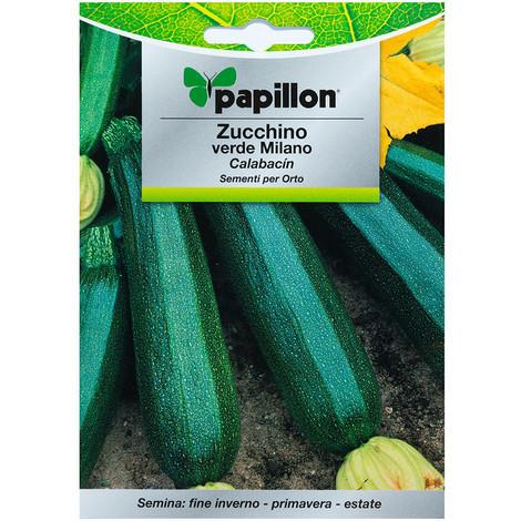 Semillas Calabacin Verde Oscuro (5 gramos) Semillas Verduras, Horticultura, Horticola, Semillas Huerto.