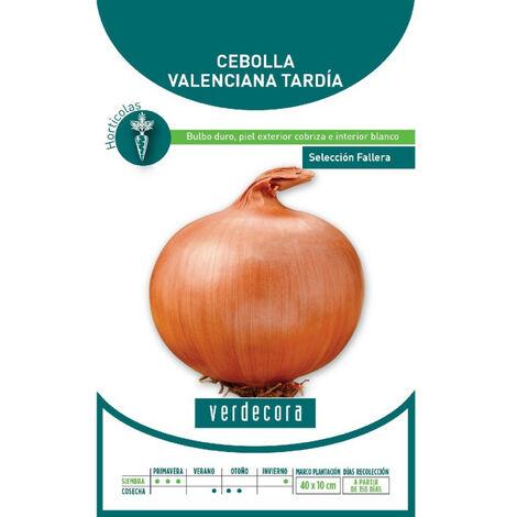 SEMILLAS CEBOLLA VALENCIANA TARDIA VERDECORA