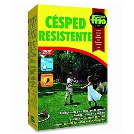 Semillas césped Resistente 1 Kg