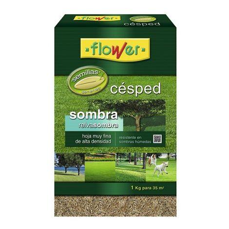 Semillas Césped Sombra FLOWER - 1 Kg
