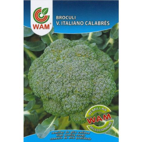 Semillas de Brécol/Brócoli Verde Italiano Calabrés WAM - Sobre 8 gr
