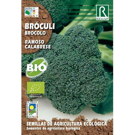 Semillas de Bróculi ramoso calabrese