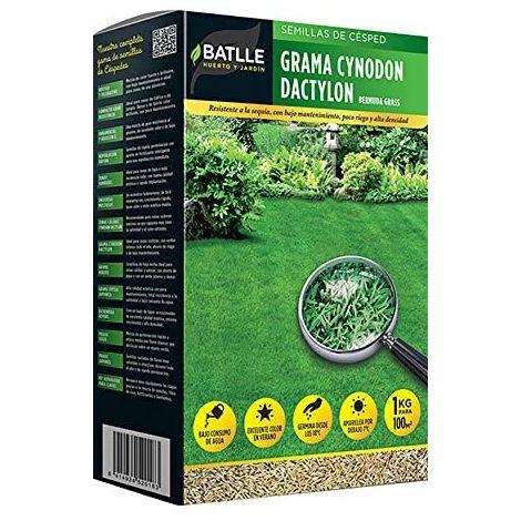 Semillas de césped grama Cynodon dactylon 1kg