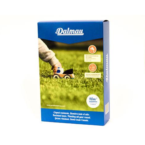 Semillas de Césped - LOLIUM PERENNE CT7 - 1 kg - Raygrass o césped inglés, mantenimiento medio - Dalmau