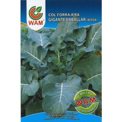Semillas de Col Forrajera Gigante Caballar (Berza) - Sobre con 8 gr.