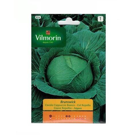 Semillas de COL REPOLLO BRUNSWICK Vilmorin 6g