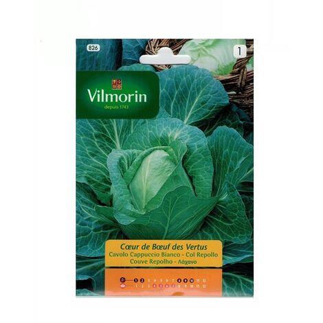 Semillas de COL REPOLLO CORAZÓN DE BUEY Vilmorin 6g