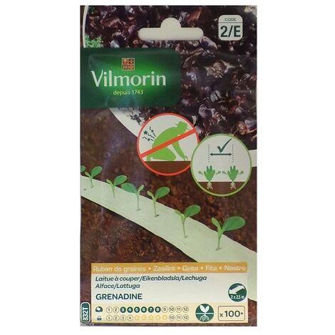 Semillas de LECHUGA GRENADINE Vilmorin (cultivo fácil)