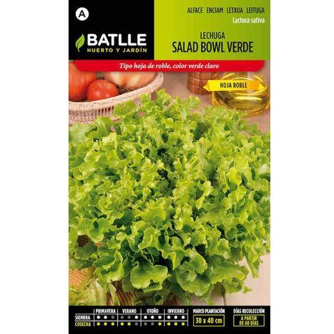 Semillas de Lechuga Salad Bowl Verde - Verde