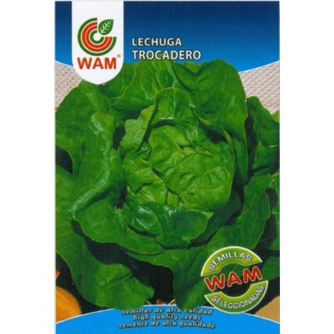 Semillas de Lechuga Trocadero WAM - Sobre 6 gr.