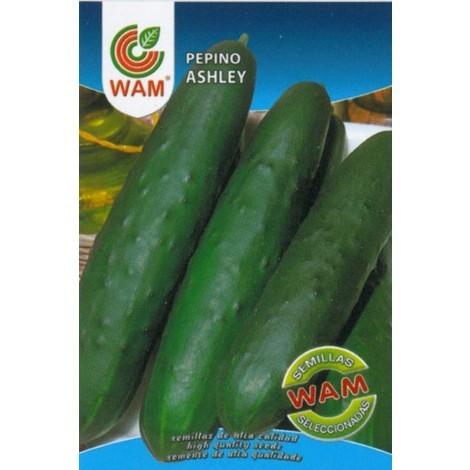 Semillas de Pepinillo ASHLEY WAM - Sobre 6 gr.