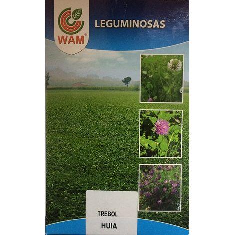Semillas de Trébol Blanco Huia - 1 kg