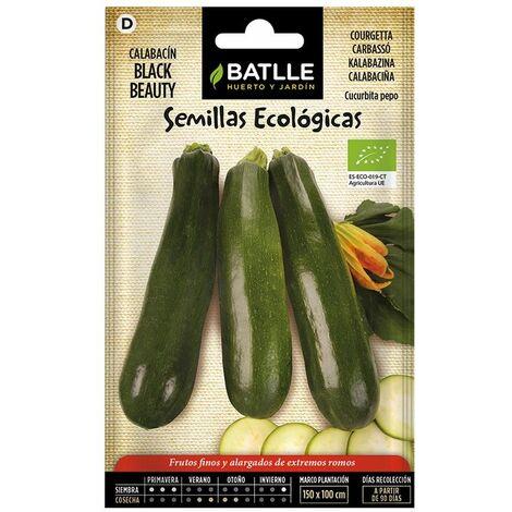 Semillas Ecológicas De Calabacín Belleza Negra