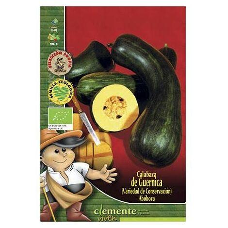 Semillas Ecológicas De Calabaza Comestible De Guernica