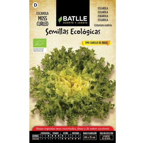 Semillas Ecológicas De Escarola Cabello De ángel-moss Curled
