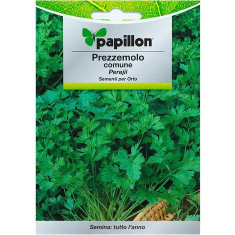 "main image of ""Semillas perejil comun (8 gramos) semillas verduras, horticultura, horticola, semillas huerto."""