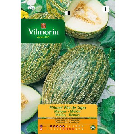 Semillas Vilmorin MELÓN PIEL DE SAPO - 5 gr