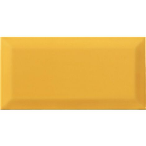 Série Bissel tiger 10x20 (carton de 1,00 m2)