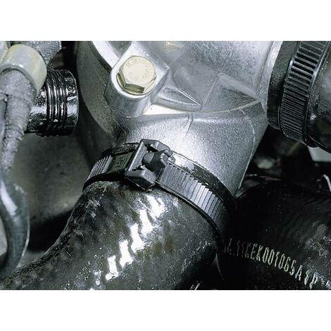 Serre-câble HellermannTyton RT250-PA12-BK 131-12520 noir 100 pc(s) R011481
