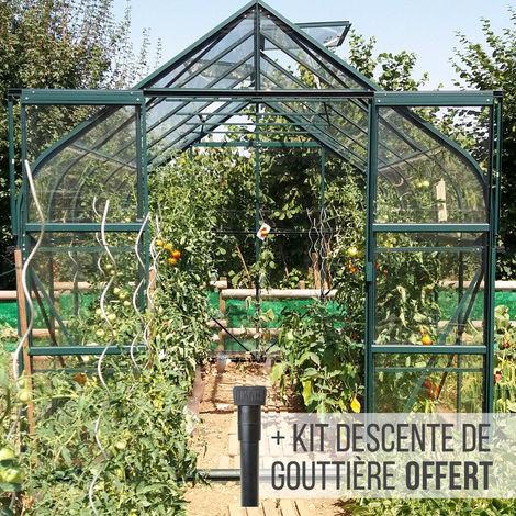Serre en verre trempé 3 mm ALOE 8,25 m² - Verte