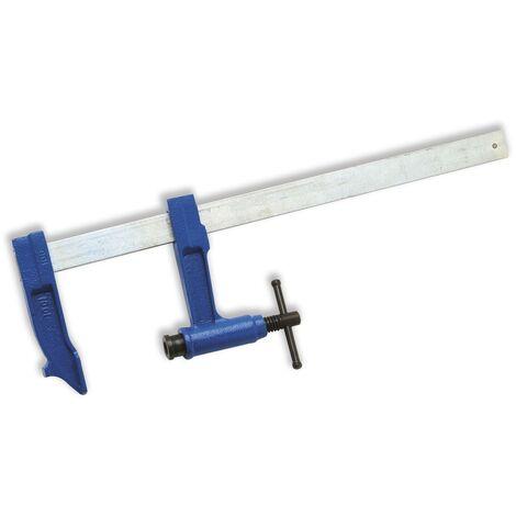 Serre-joints a pompe - saillie100 - section 30 x 8 - serrage 800 mm