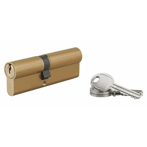 Serrupro - SERRUPRO - Cylindre de serrure - 40x50 mm