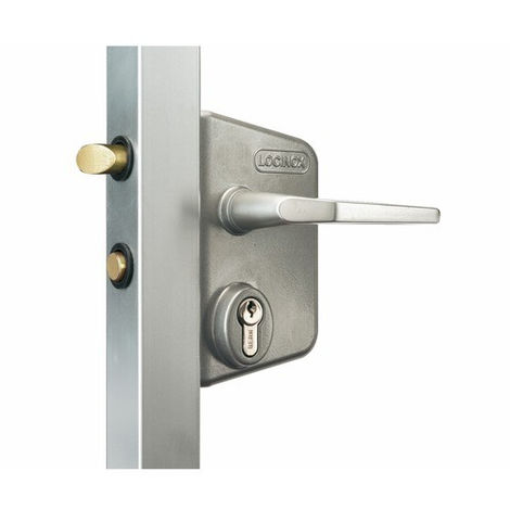 Serrure de portail en applique - Clé I - Axe à 30 mm - Profil 40 à 60 mm - LCKX - Locinox