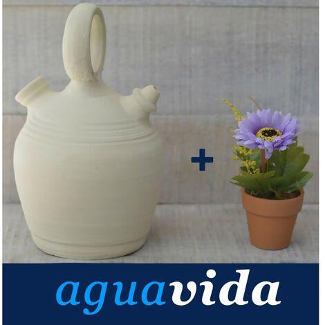 Set de Planta y Botijo dispensador de agua H2O, 3 lts Aprox. Sistema Natural de enfriamiento sostenible.