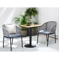 Set of 2 Garden Chairs Grey PALMI