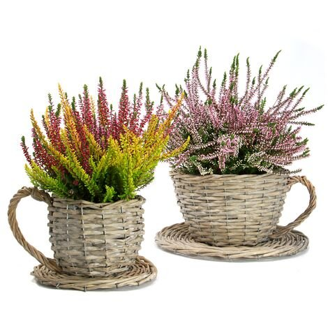 Set of 2 Willow Teacup Planters   M&W