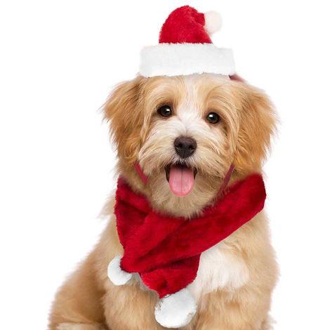 Immagini Cani Natale.Set Sciarpa E Cappello Babbo Natale Per Cani E Gatti Di Piccola Taglia Rosso