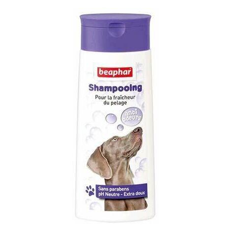 Shampooing anti-odeurs - 250 ml