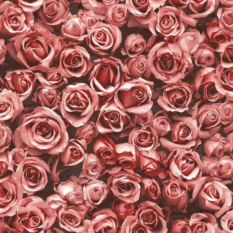 Small Red Roses Floral Wallpaper Flowers Photographic Collage Muriva Rosalee