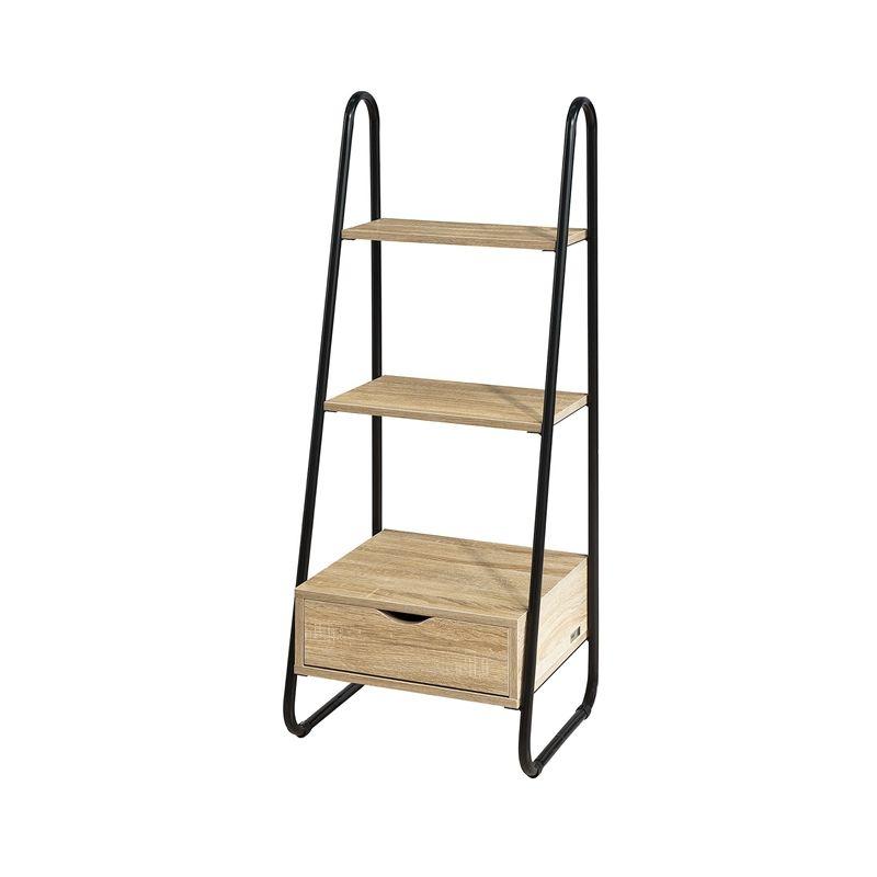 premium selection 81485 9e688 SoBuy Freestanding Ladder Shelf Rack Bookcase Storage Display Unit FRG219-N