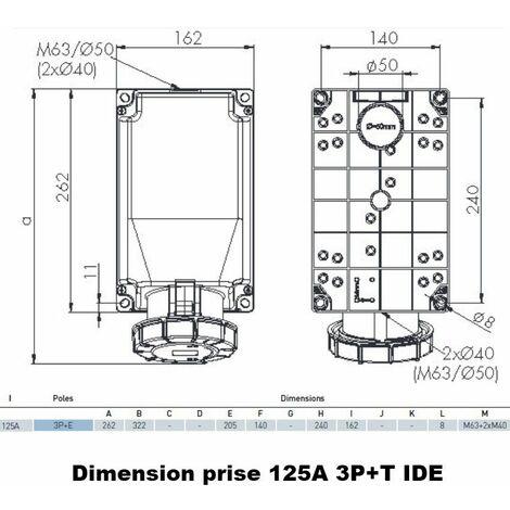 Socle de prise triphasé 3P+T 125A en saillie étanche IP67 Prise saillie 3P+T SANS fil pilote 125A
