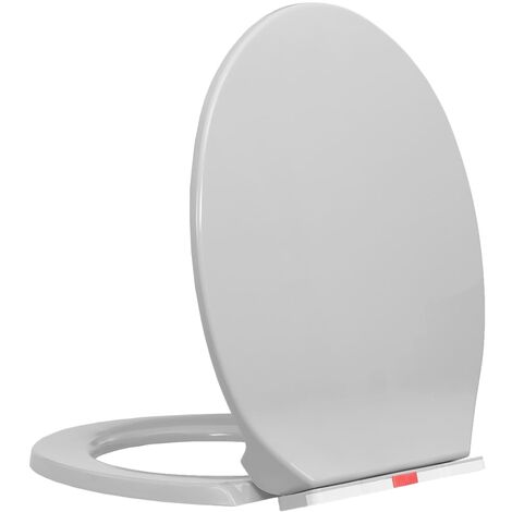 Soft-Close Toilet Seat Quick Release Light Grey Oval
