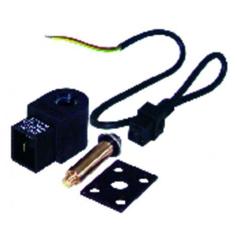 Solenoid valve pump as 220v (991435) - SUNTEC : 991435