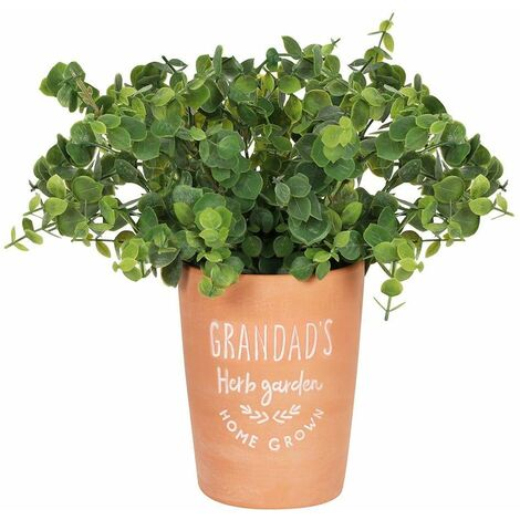 Something Different Grandads Herb Garden Plant Pot (One Size) (Terracotta)