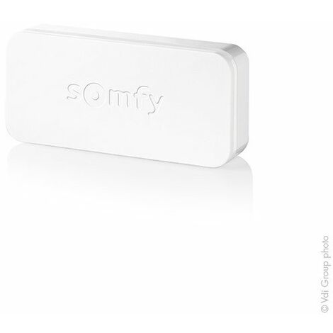 Somfy - Détecteur de vibration et d'ouverture IntelliTAG (REF : 2401487)