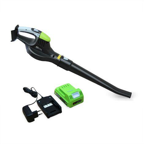 Souffleur de feuilles à batterie Lithium Ion 20V VOLTR, batterie et chargeur fournis