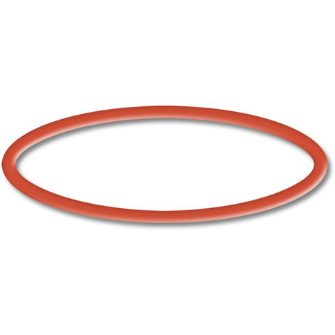 Spare Part: SunSun CPP-10000 Poolpump O-Ring 2