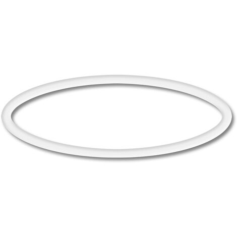 Spare Part: SunSun CPP-10000F Poolpump O-Ring 1