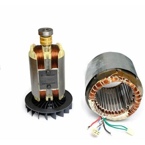 """Spule Strom Generator Stator Rotor für Stromerzeuger 13 PS 1-Phase von DeTec.-""""WK4000010101"""""""