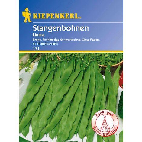 Stangenbohnen Limka flachhülsig