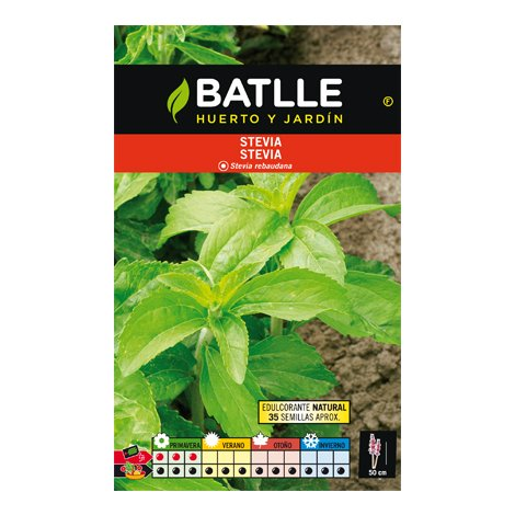 Stevia - Estevia - Stevia rebaudiana - 10gr de semillas - Bt