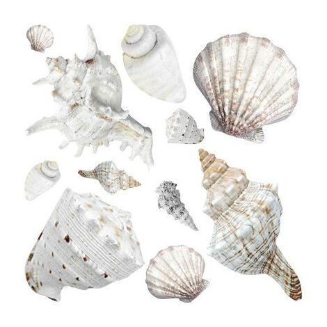 Sticker mural no.BP24 Exotic Shells