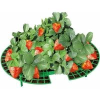 Strawberry support, 5 pcs WENKO
