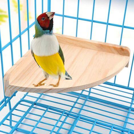 Support de plate-forme pour oiseaux pour animaux de compagnie en bois pour petits animaux Perroquet Perruche Conure Calopsitte Perruche Gerbille Rat Souris Chinchilla Hamster Cage Accessoires Exercice Jouets Secteur